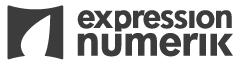 Affichage et habillage numerique grand format